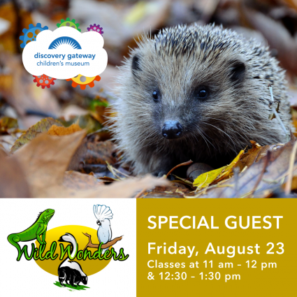 Special Guest: Wild Wonders